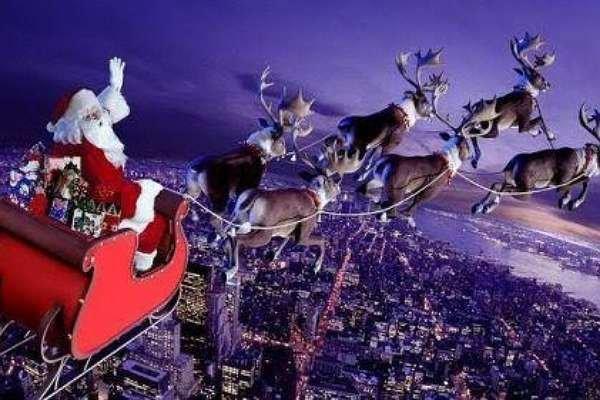 """Freni boşalmış Noel """"geyikleri"""" II  / Öykü ARICA"""