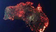 Koskoca bir kıta kül oldu: Avustralya yanıyor!
