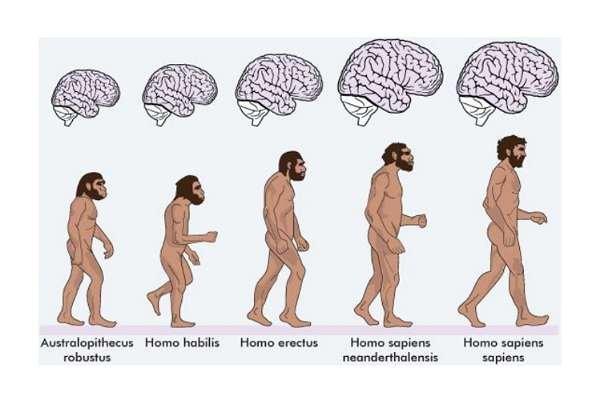 Homo sapiens'in büyük çıkmazı: Evrimsel zekâ ile sezgisel zekâ / Oğuz Evren KILIÇ