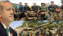 Barış Terkoğlu: Türk hükümeti masada terör gruplarının hamisi olarak konumlandırılıyor