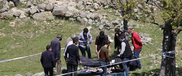 Ankara'da 60 yaşındaki kadın uğradığı ayı saldırısında hayatını kaybetti