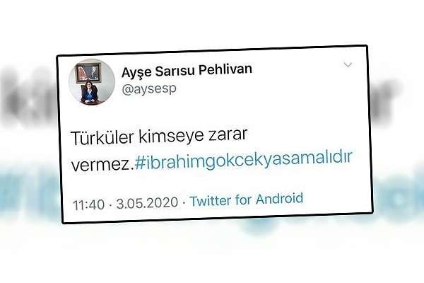 HSK, İbrahim Gökçek için çağrı yapan Hakim Ayşe Sarısu Pehlivan hakkında inceleme başlattı