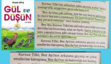 Çocuk kitabında 'tecavüzle cezalandırma' hikayesi: Tilki ayıya tecavüz ediyor; Ayı bekaretini kaybediyor!