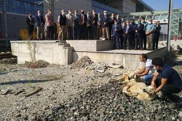 TCDD kazalara 'önlem' için kurban kesti