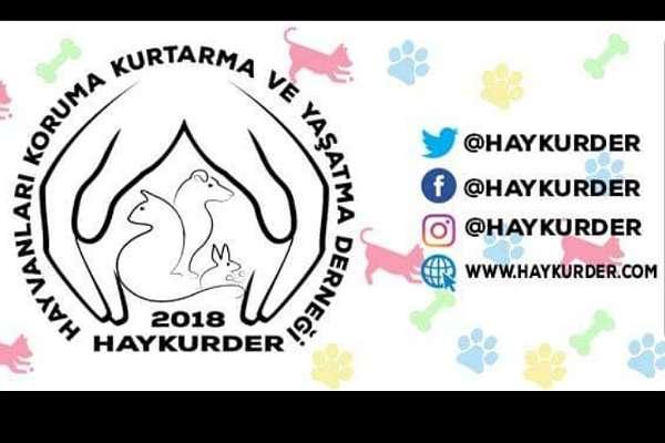 HAYKURDER, hayvan hakları yasa tasarısına tepki gösterdi