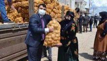 AKP'li Şamil Tayyar, yardım işini şova dönüştüren 'hadsiz' AKP'liye tepki gösterdi