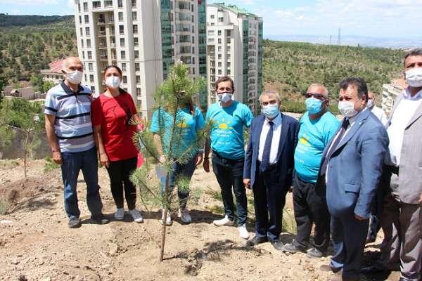 İYİ Parti gençliği 'Medeniyet yolunda bir taş daha' diyerek 'Cesurlar Ormanı' için ağaç dikti