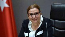 """AKP ve MHP, Ruhsar Pekcan'ın araştırılma önergesini """"yine"""" reddetti!"""