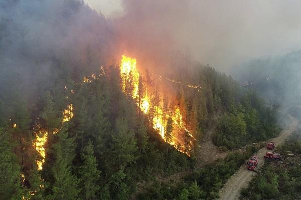 Fox TV, Halk TV, Habertürk, KRT ve Tele1 kanallarına 'yangınları gösterdin' cezası!