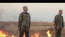 Taklacı güvercin: İki askerimizin yakılma fetvasını veren IŞİD kadısı  Gaziantep'te kuşçuluk yapıyor!
